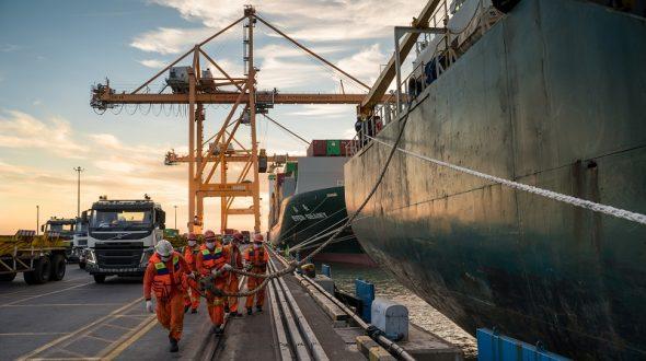 Legal Merger Pelindo I-IV, Perkuat ELN Pelabuhan Dalam Satu Server